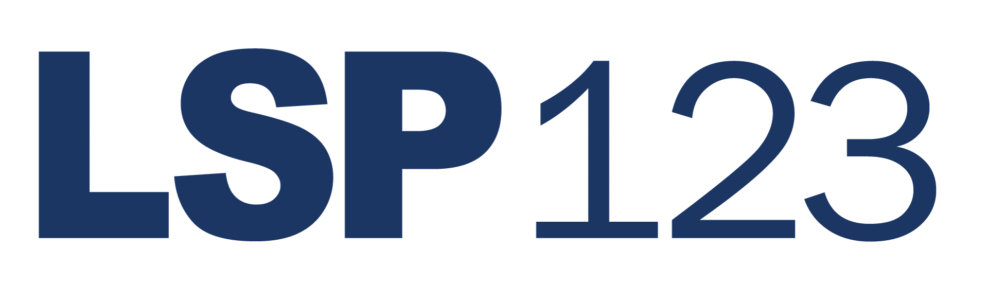 LSP123 Leadership, Strategy, Process - business & leadership coaching